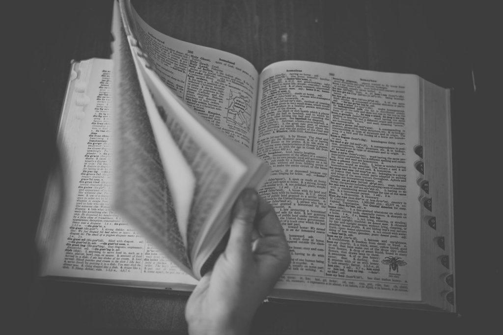 スペイン語 辞書